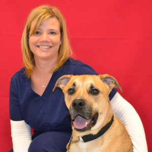 Christy, Tech
